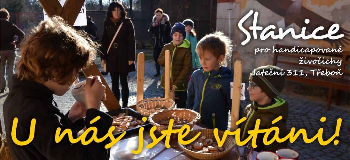 web-slider-vitani-e1459007207583